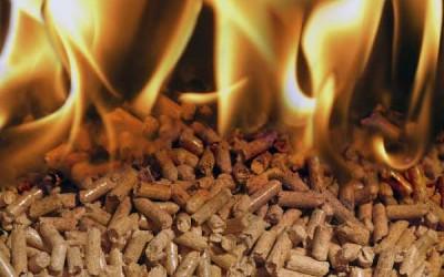 Leña y pellet = Biomasa